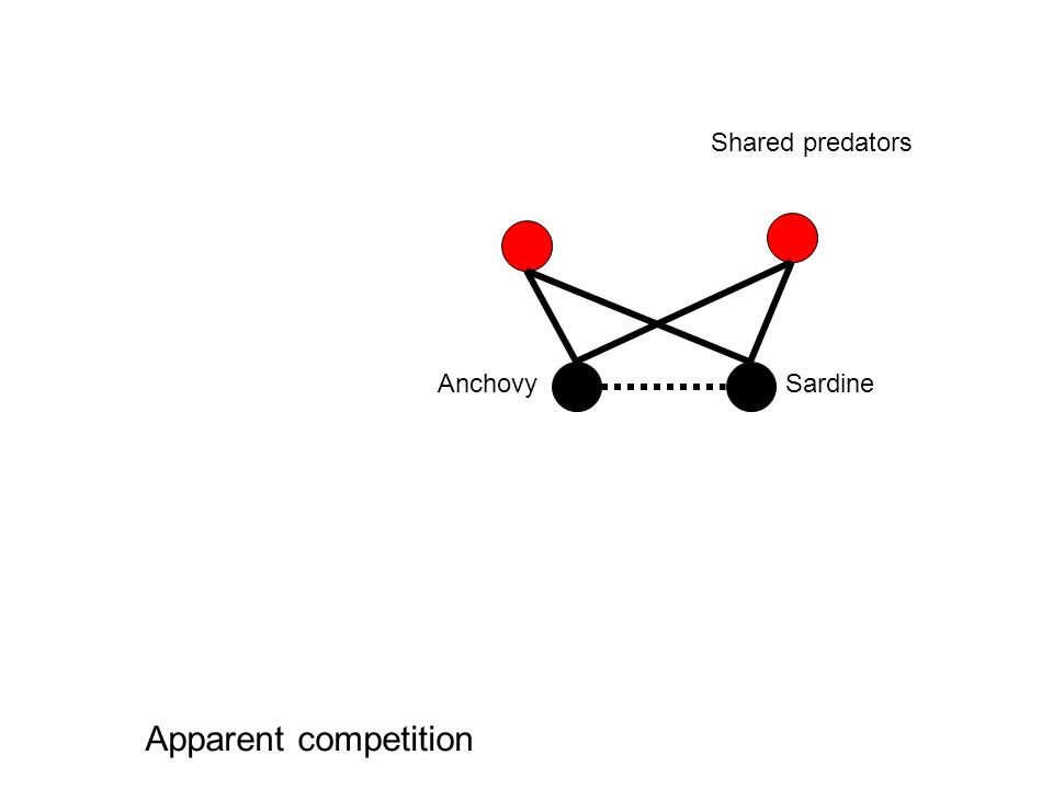 SardineAnchovy Shared prey Exploitative competition