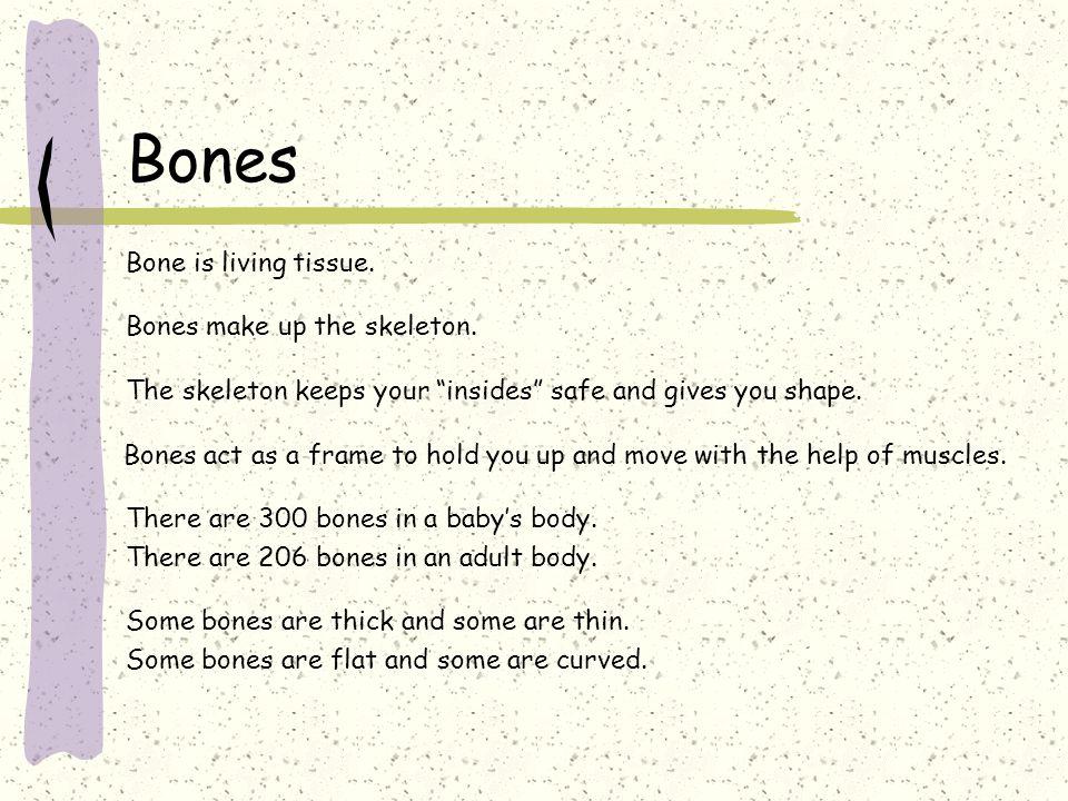 "Bones Bone is living tissue. Bones make up the skeleton. The skeleton keeps your ""insides"" safe and gives you shape. Bones act as a frame to hold you"