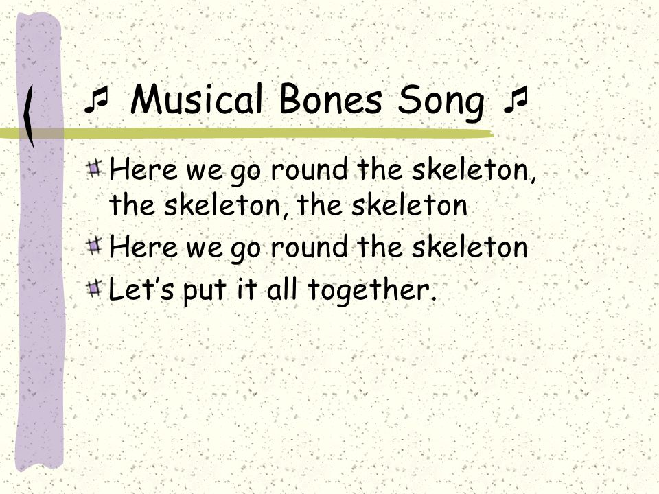  Musical Bones Song  Here we go round the skeleton, the skeleton, the skeleton Here we go round the skeleton Let's put it all together.