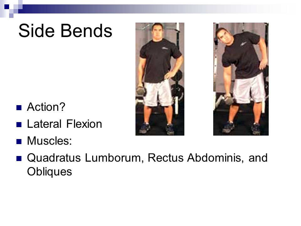 Side Bends Action? Lateral Flexion Muscles: Quadratus Lumborum, Rectus Abdominis, and Obliques