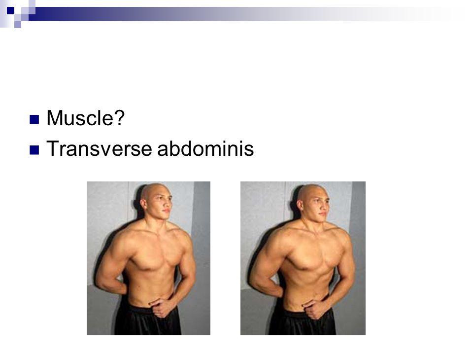Muscle? Transverse abdominis