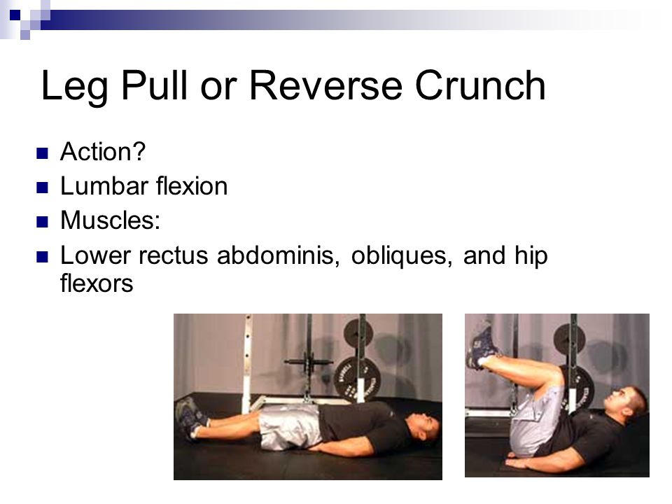 Leg Pull or Reverse Crunch Action? Lumbar flexion Muscles: Lower rectus abdominis, obliques, and hip flexors
