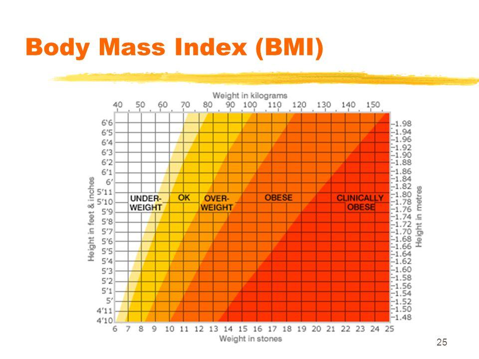 25 Body Mass Index (BMI)