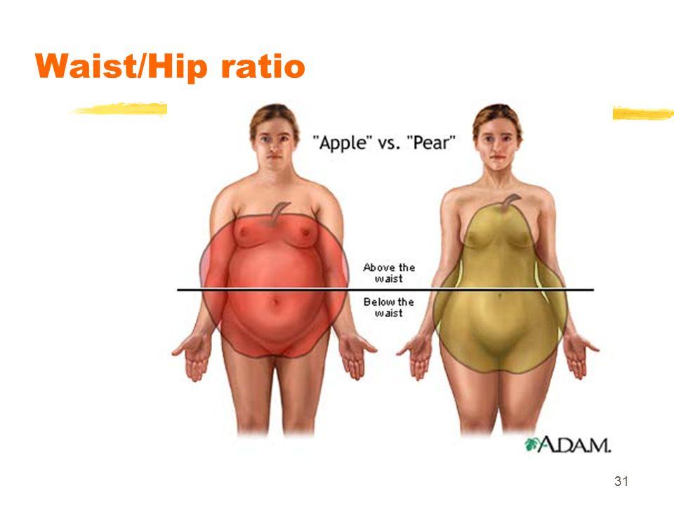 31 Waist/Hip ratio