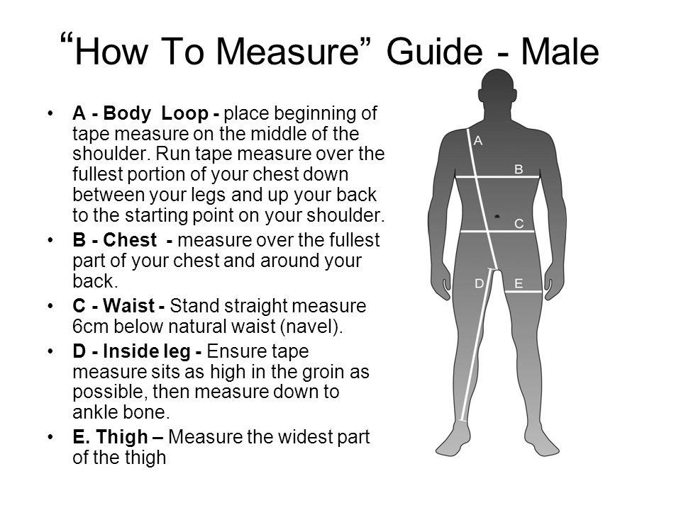 Differences Between Longs V Regulars - Male A - Body Loop.