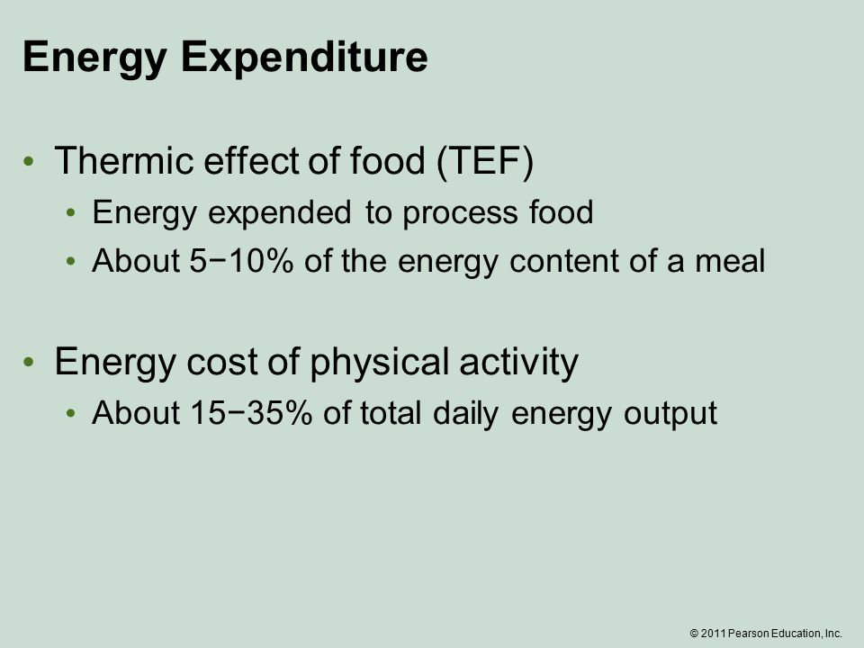 Energy Expenditure Thermic effect of food (TEF) Energy expended to process food About 5−10% of the energy content of a meal Energy cost of physical activity About 15−35% of total daily energy output