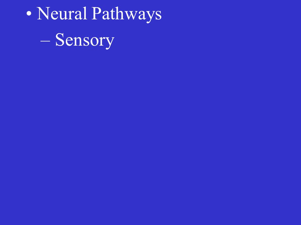– Sensory