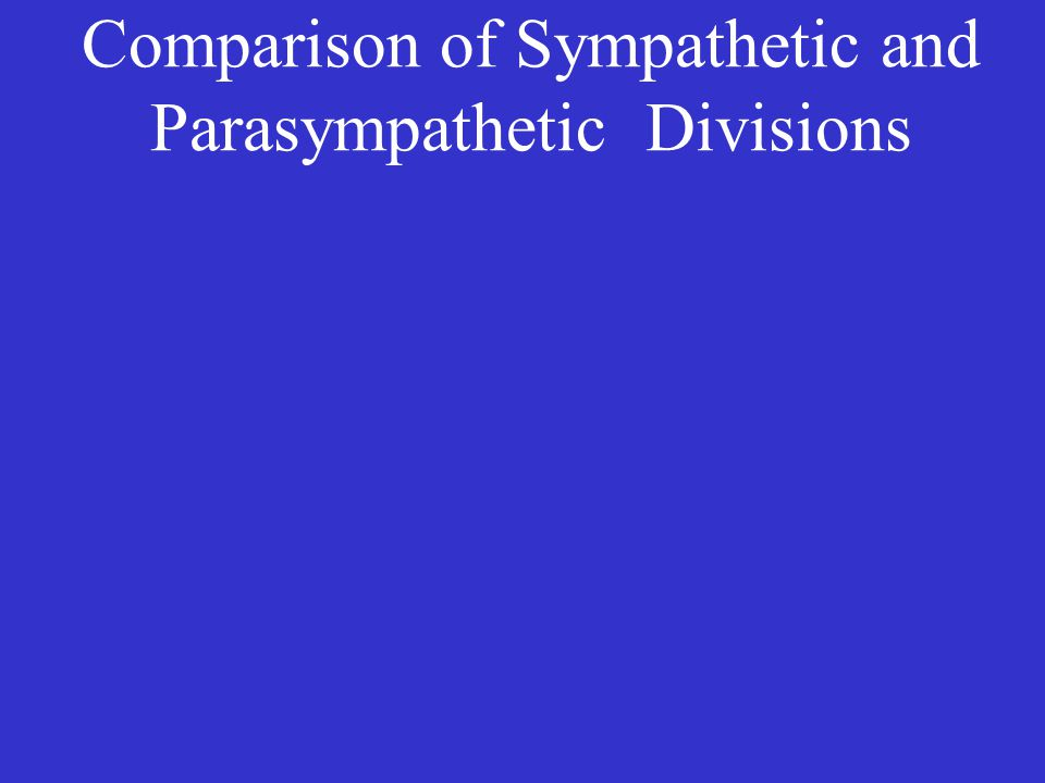 Comparison of Sympathetic and Parasympathetic Divisions