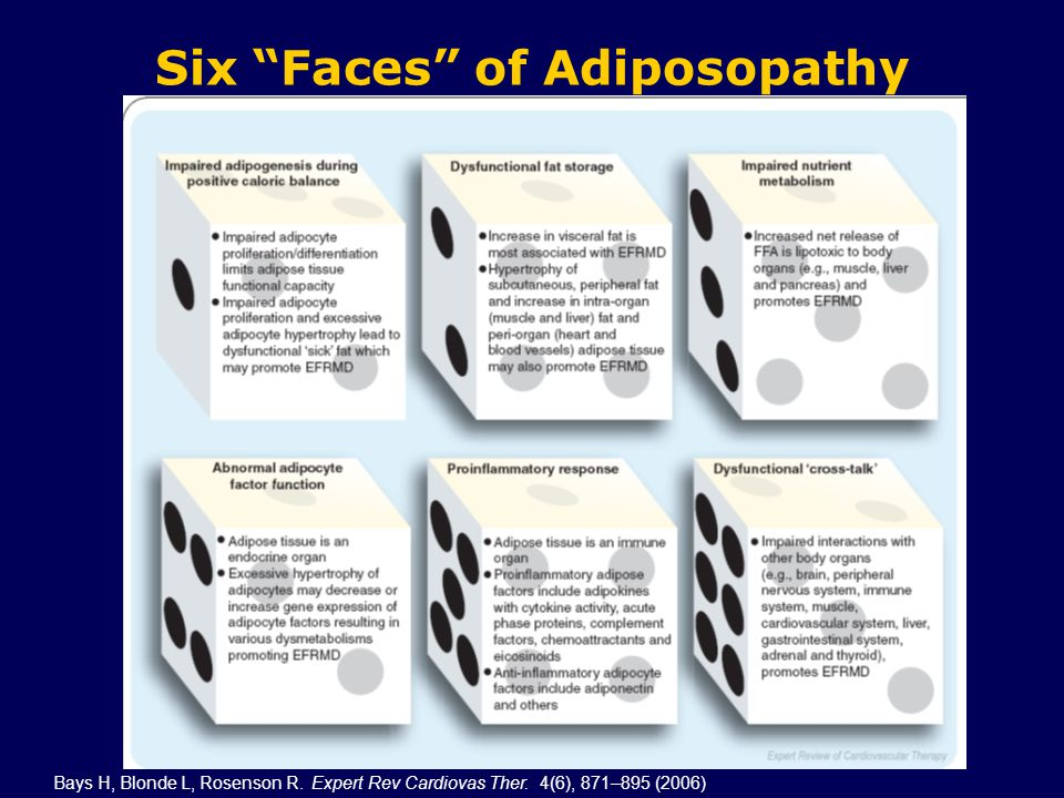 Six Faces of Adiposopathy Bays H, Blonde L, Rosenson R.