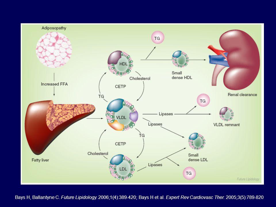 Bays H, Ballantyne C. Future Lipidology. 2006;1(4):389-420; Bays H et al. Expert Rev Cardiovasc Ther. 2005;3(5):789-820