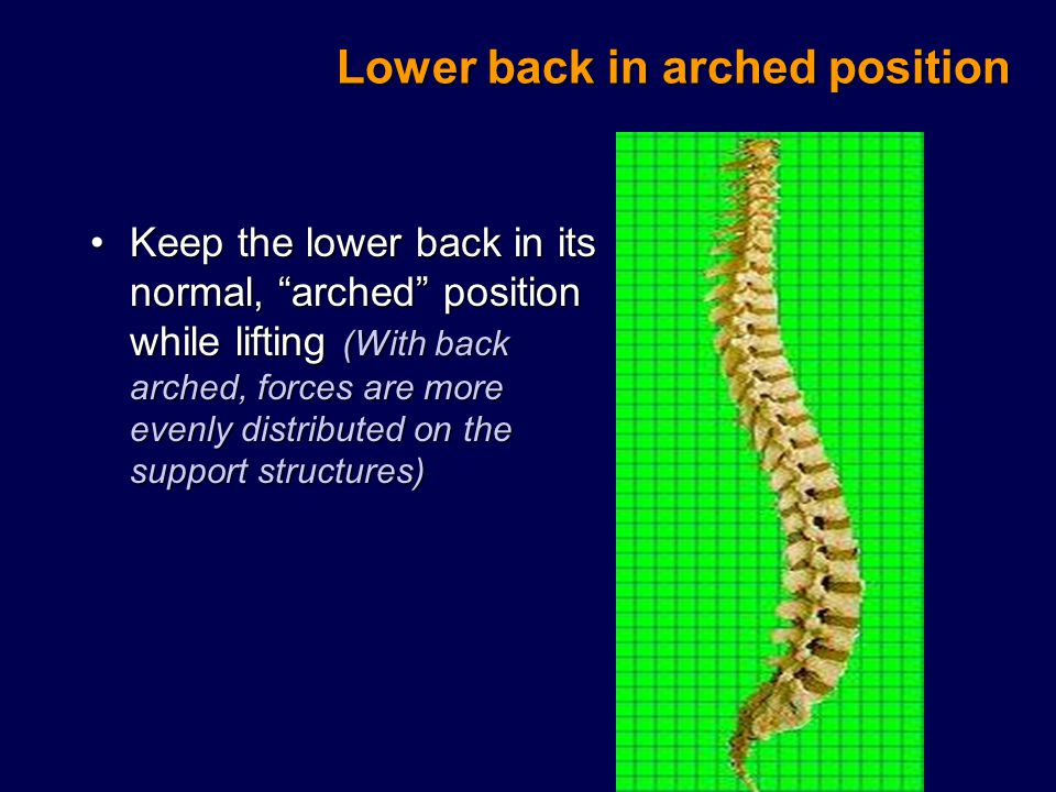 Lower back in arched position Keep the lower back in its normal, arched position while lifting (With back arched, forces are more evenly distributed on the support structures)Keep the lower back in its normal, arched position while lifting (With back arched, forces are more evenly distributed on the support structures)