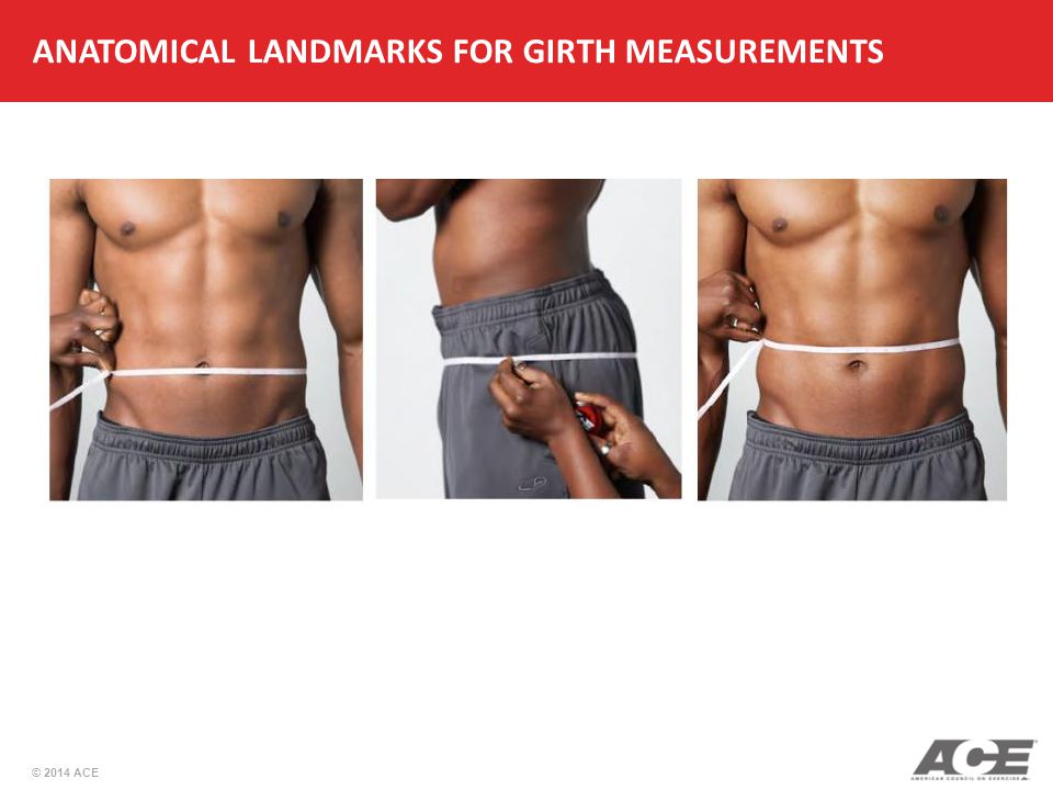 © 2014 ACE ANATOMICAL LANDMARKS FOR GIRTH MEASUREMENTS