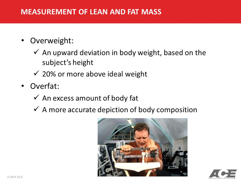 © 2014 ACE Overweight: An upward deviation in body weight, based on the subject's height 20% or more above ideal weight Overfat: An excess amount of body fat A more accurate depiction of body composition MEASUREMENT OF LEAN AND FAT MASS