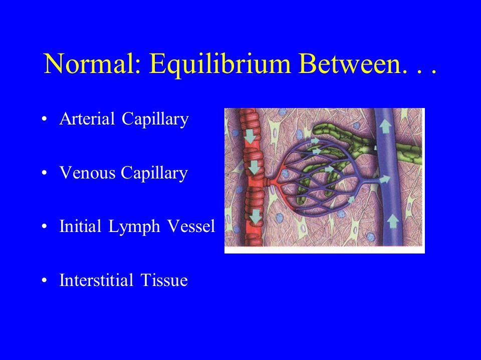 Normal: Equilibrium Between... Arterial Capillary Venous Capillary Initial Lymph Vessel Interstitial Tissue
