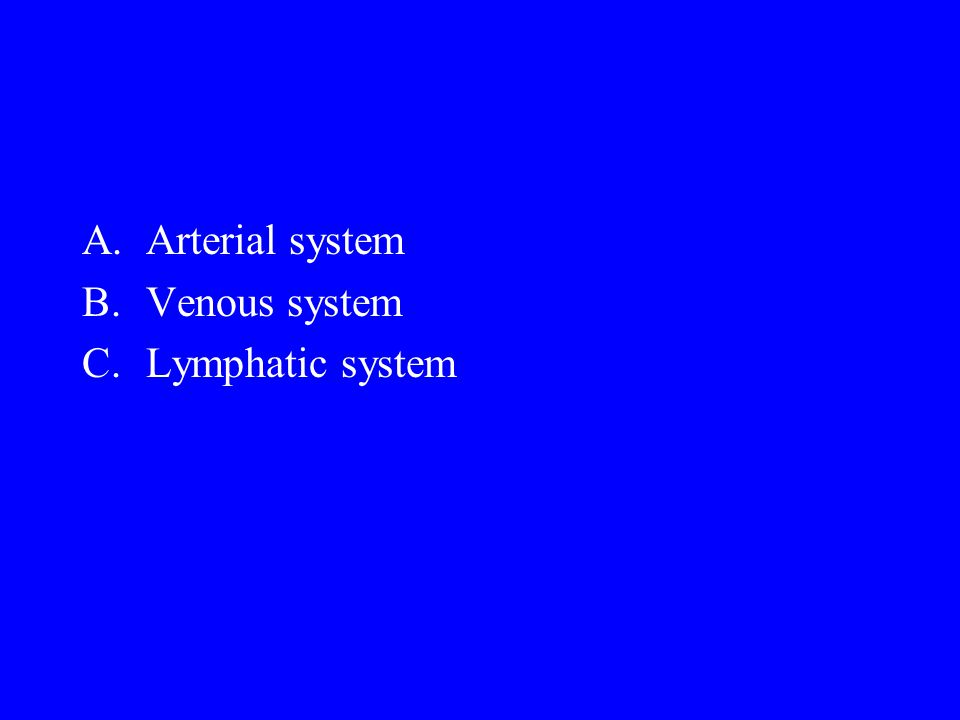 A.Arterial system B.Venous system C.Lymphatic system