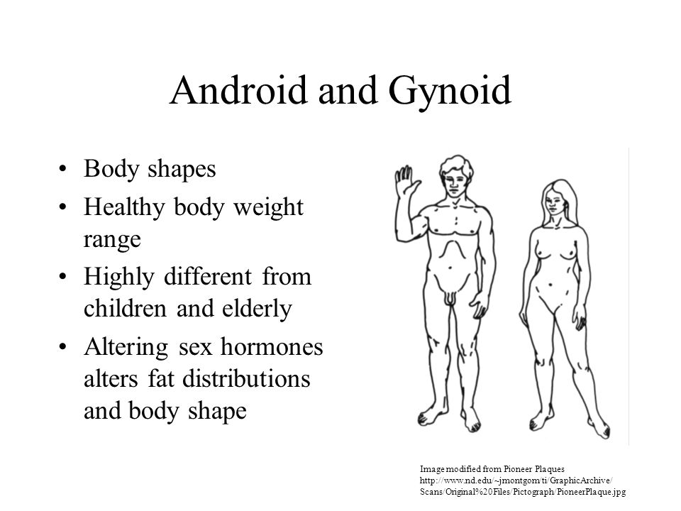 Android and Gynoid Body shapes Healthy body weight range Highly different from children and elderly Altering sex hormones alters fat distributions and body shape Image modified from Pioneer Plaques http://www.nd.edu/~jmontgom/ti/GraphicArchive/ Scans/Original%20Files/Pictograph/PioneerPlaque.jpg