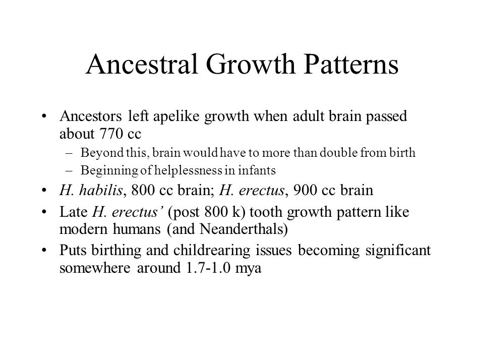 Ancestral Growth Patterns Ancestors left apelike growth when adult brain passed about 770 cc –Beyond this, brain would have to more than double from b