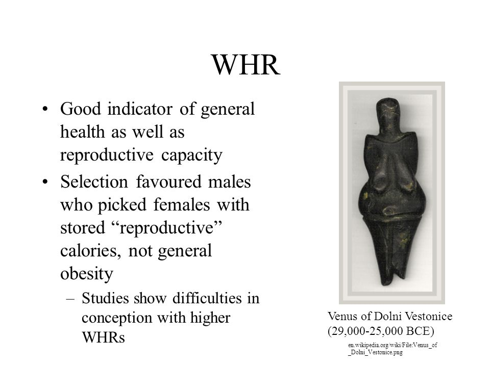 WHR Good indicator of general health as well as reproductive capacity Selection favoured males who picked females with stored reproductive calories, not general obesity –Studies show difficulties in conception with higher WHRs Venus of Dolni Vestonice (29,000-25,000 BCE) en.wikipedia.org/wiki/File:Venus_of _Dolni_Vestonice.png