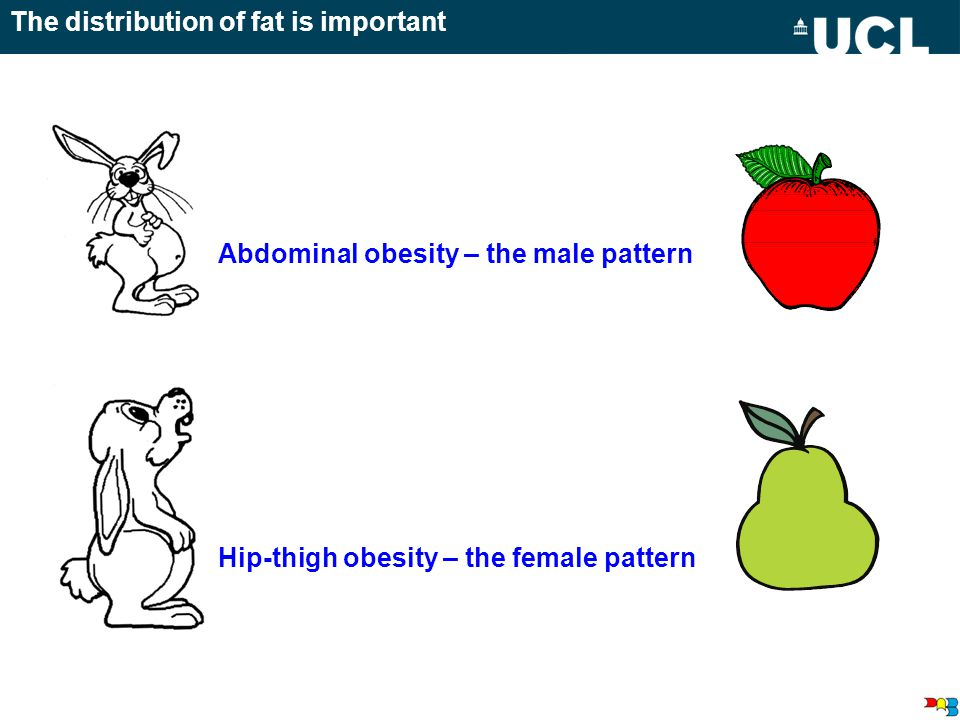 The distribution of fat is important Abdominal obesity – the male pattern Hip-thigh obesity – the female pattern
