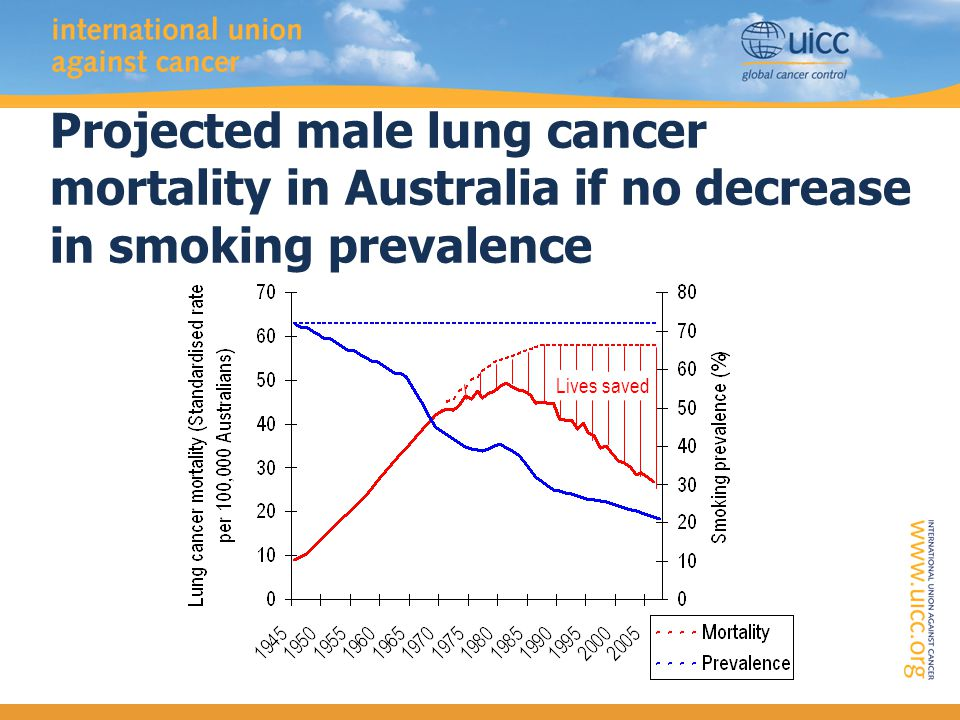 Projected male lung cancer mortality in Australia if no decrease in smoking prevalence Lives saved