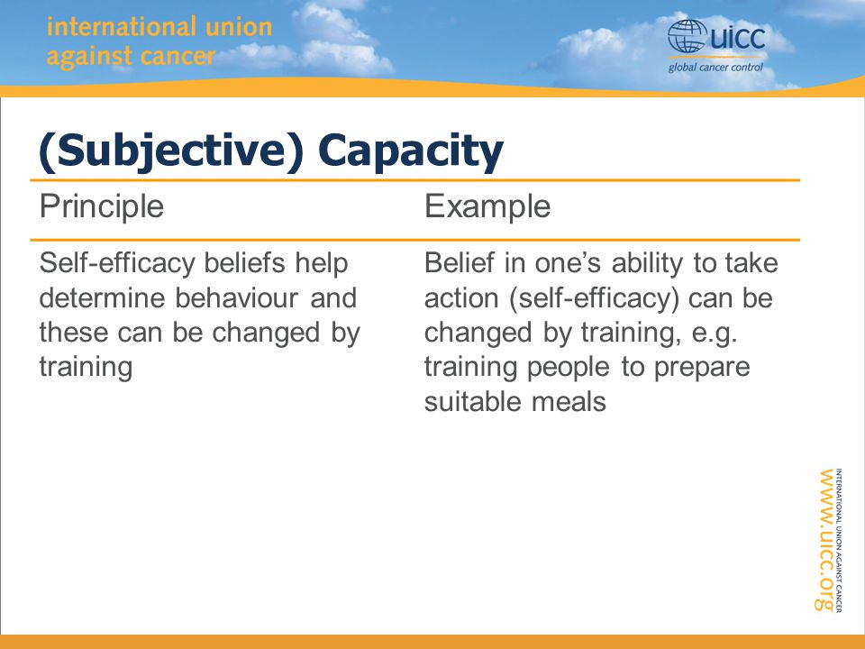 (Subjective) Capacity PrincipleExample Self-efficacy beliefs help determine behaviour and these can be changed by training Belief in one's ability to take action (self-efficacy) can be changed by training, e.g.