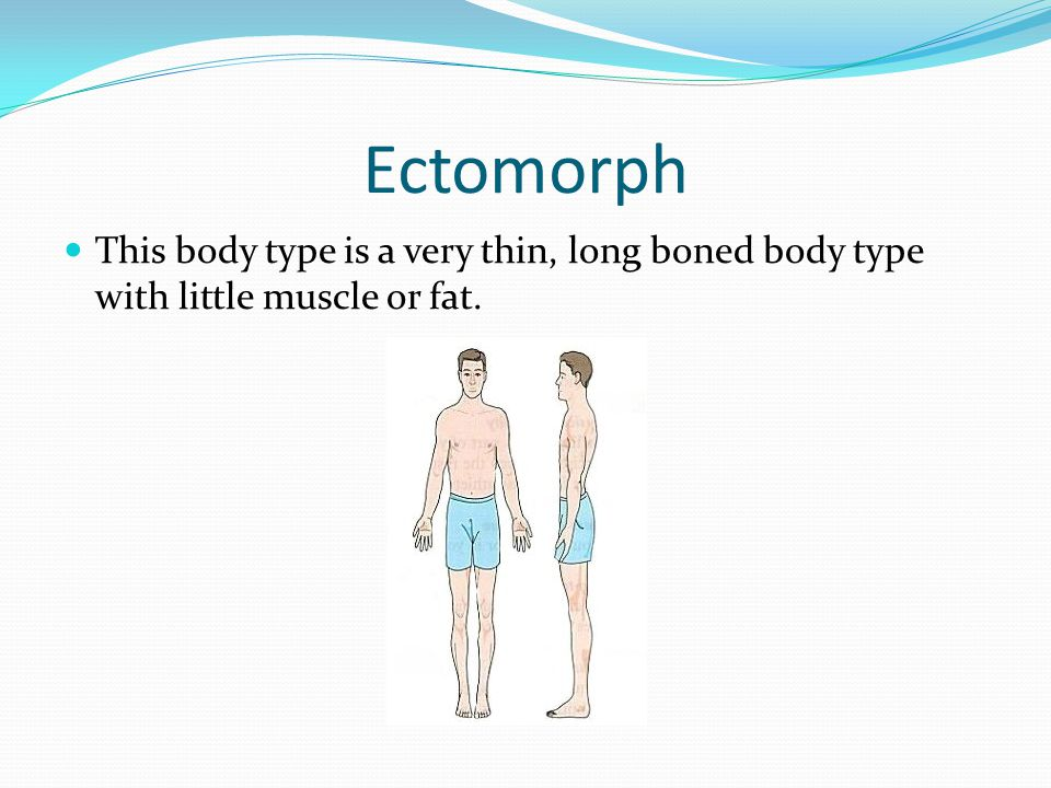 Ectomorph This body type is a very thin, long boned body type with little muscle or fat.