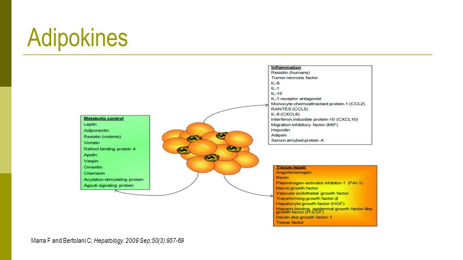 Adipokines Marra F and Bertolani C; Hepatology. 2009 Sep;50(3):957-69