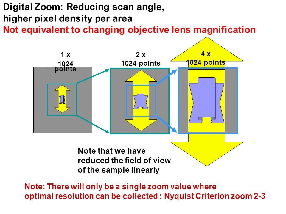 Digital Zoom: Reducing scan angle, higher pixel density per area Not equivalent to changing objective lens magnification 1 x 1024 points 2 x 1024 points 4 x 1024 points Note that we have reduced the field of view of the sample linearly Note: There will only be a single zoom value where optimal resolution can be collected : Nyquist Criterion zoom 2-3