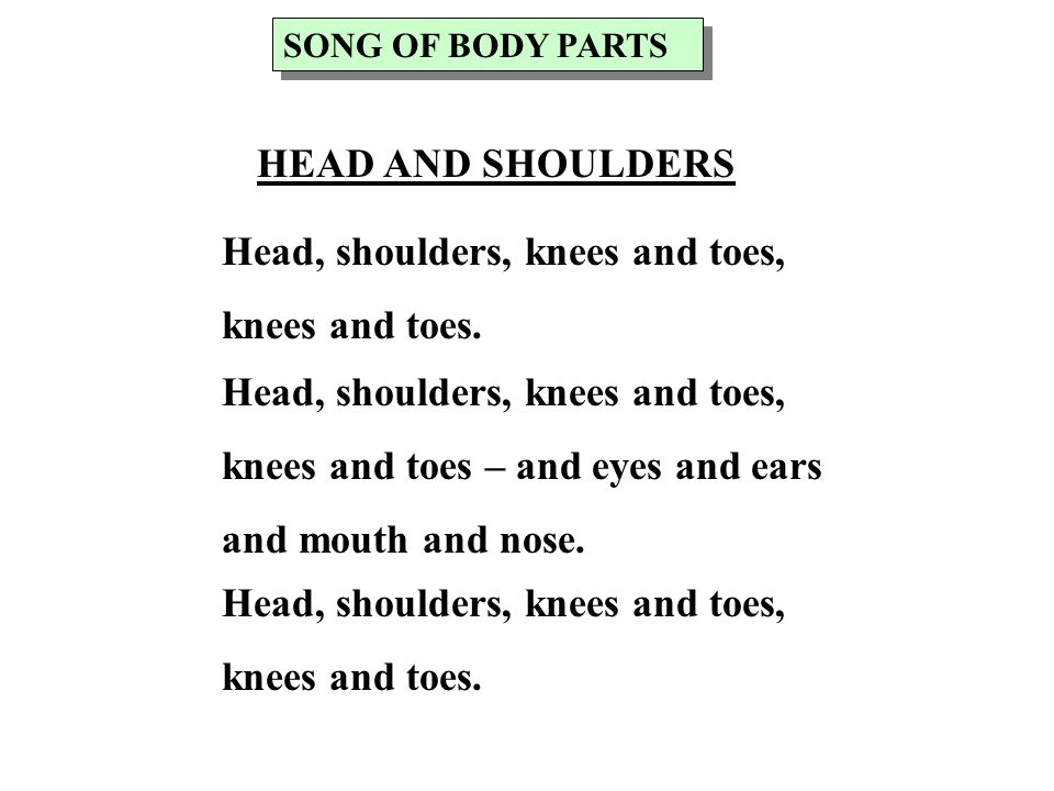 Head, shoulders, knees and toes, knees and toes.