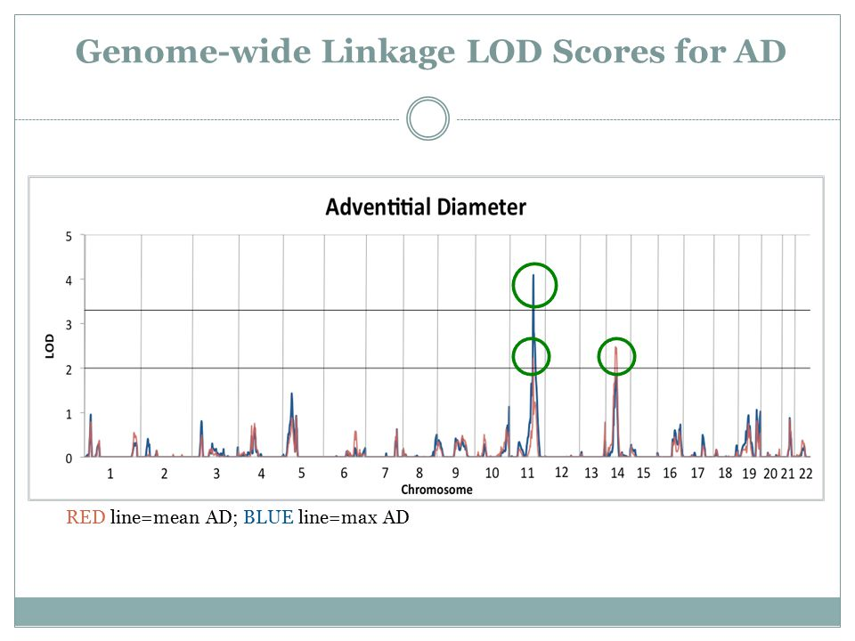 Genome-wide Linkage LOD Scores for AD RED line=mean AD; BLUE line=max AD