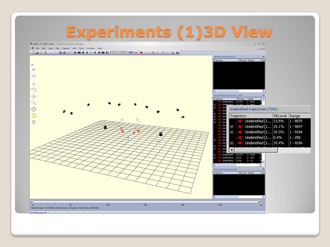 Experiments (1)3D View