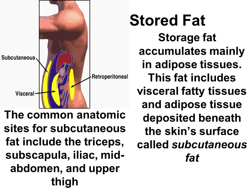 Stored Fat Storage fat accumulates mainly in adipose tissues. This fat includes visceral fatty tissues and adipose tissue deposited beneath the skin's
