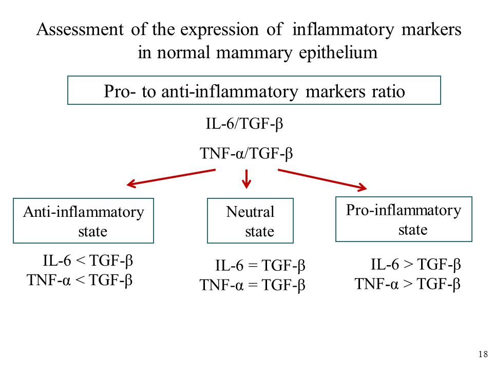 18 IL-6 < TGF- β TNF- α < TGF- β Assessment of the expression of inflammatory markers in normal mammary epithelium Pro- to anti-inflammatory markers ratio IL-6/TGF- β TNF- α /TGF- β Anti-inflammatory state Neutral state Pro-inflammatory state IL-6 = TGF- β TNF-α = TGF- β IL-6 > TGF- β TNF-α > TGF- β