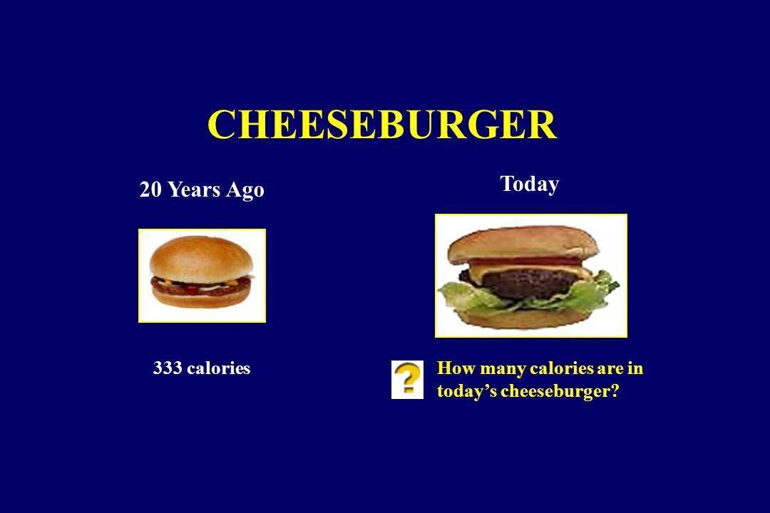 CHEESEBURGER 20 Years Ago Today 333 caloriesHow many calories are in today's cheeseburger?