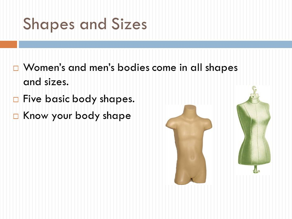 Shapes and Sizes  Women's and men's bodies come in all shapes and sizes.