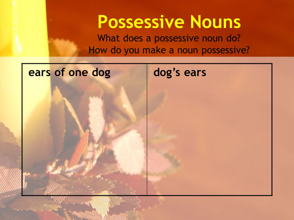 Possessive Nouns What does a possessive noun do. How do you make a noun possessive.