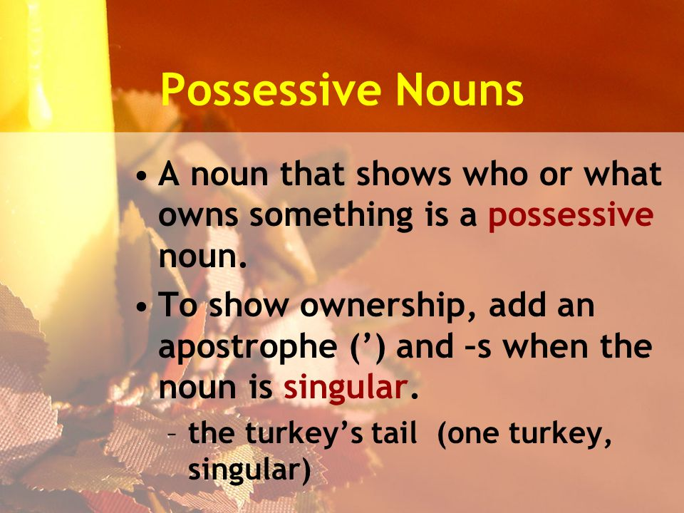 Possessive Nouns A noun that shows who or what owns something is a possessive noun.