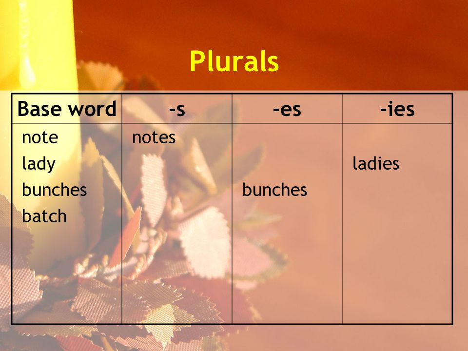Plurals Base word-s-es-ies note lady bunches batch notes bunches ladies