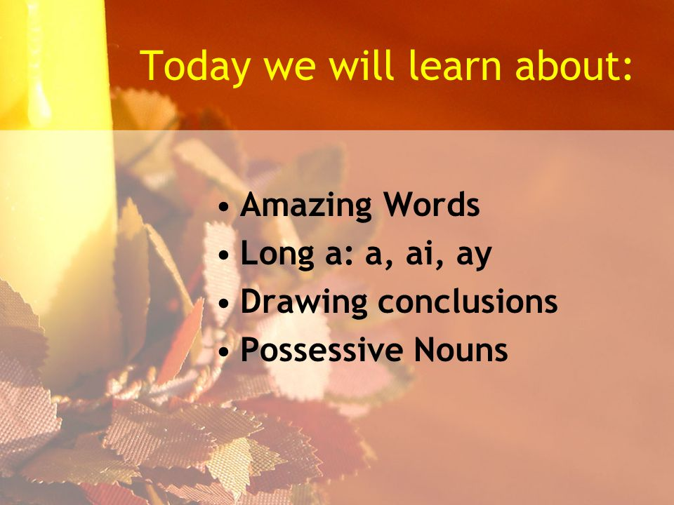 Today we will learn about: Amazing Words Long a: a, ai, ay Drawing conclusions Possessive Nouns