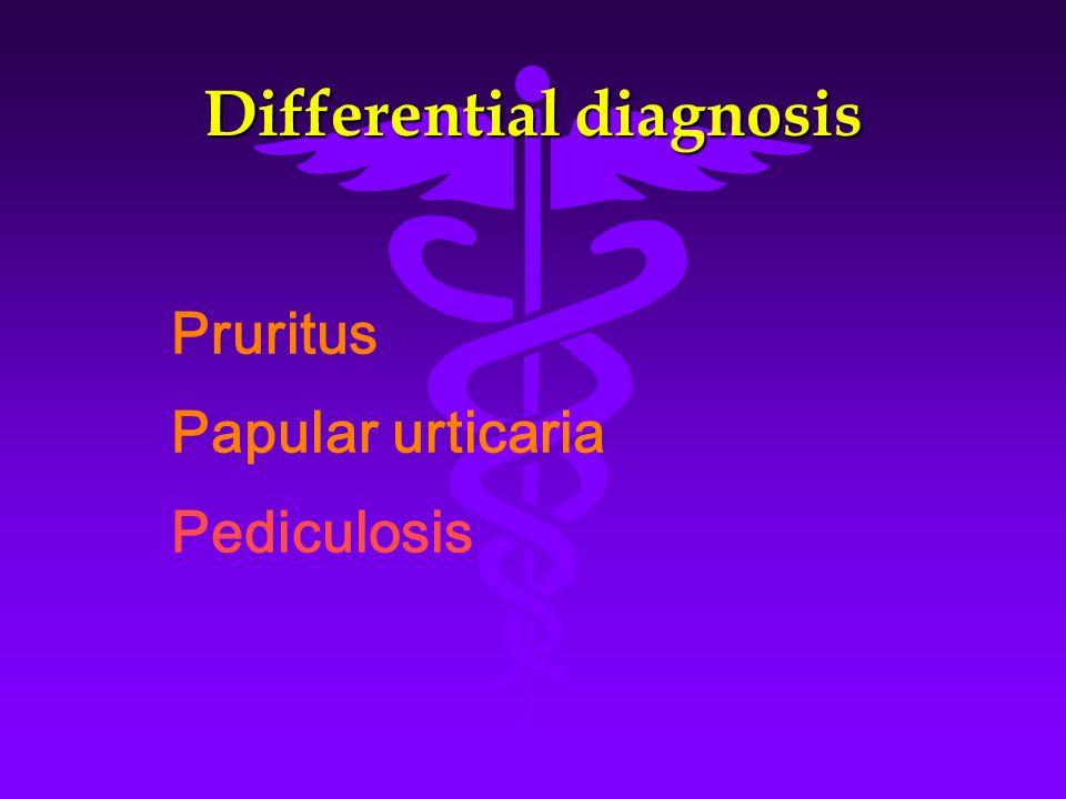 Differential diagnosis Pruritus Papular urticaria Pediculosis
