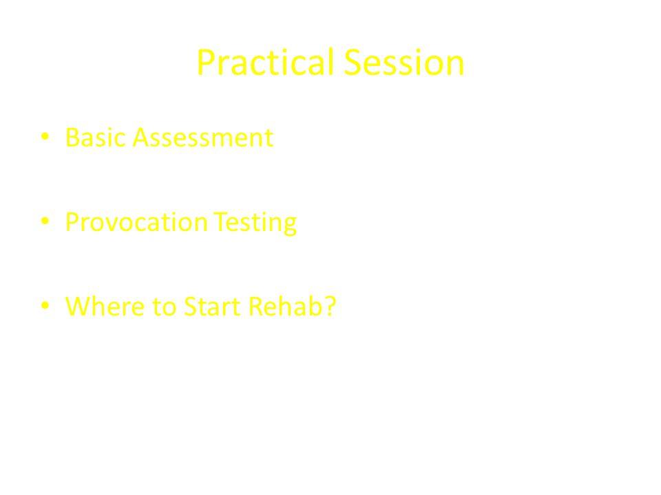 Practical Session Basic Assessment Provocation Testing Where to Start Rehab?
