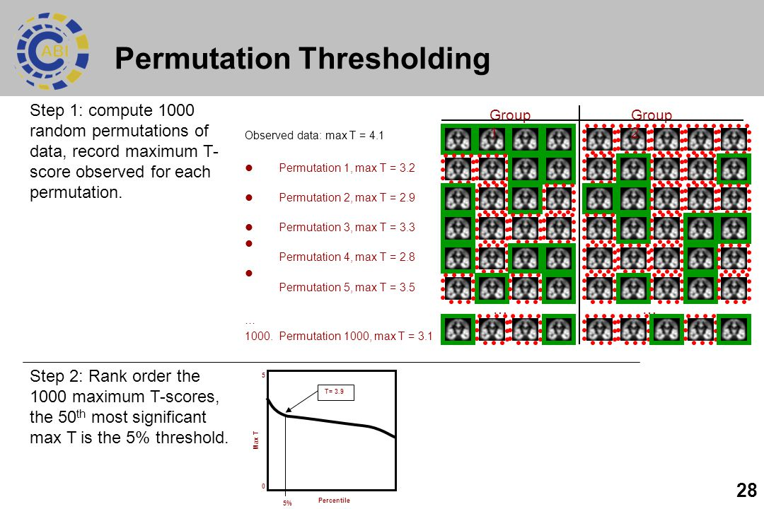 28 Permutation Thresholding Observed data: max T = 4.1 Permutation 1, max T = 3.2 Permutation 2, max T = 2.9 Permutation 3, max T = 3.3 Permutation 4, max T = 2.8 Permutation 5, max T = 3.5 … 1000.Permutation 1000, max T = 3.1 Group 1 Group 2 …… Step 1: compute 1000 random permutations of data, record maximum T- score observed for each permutation.