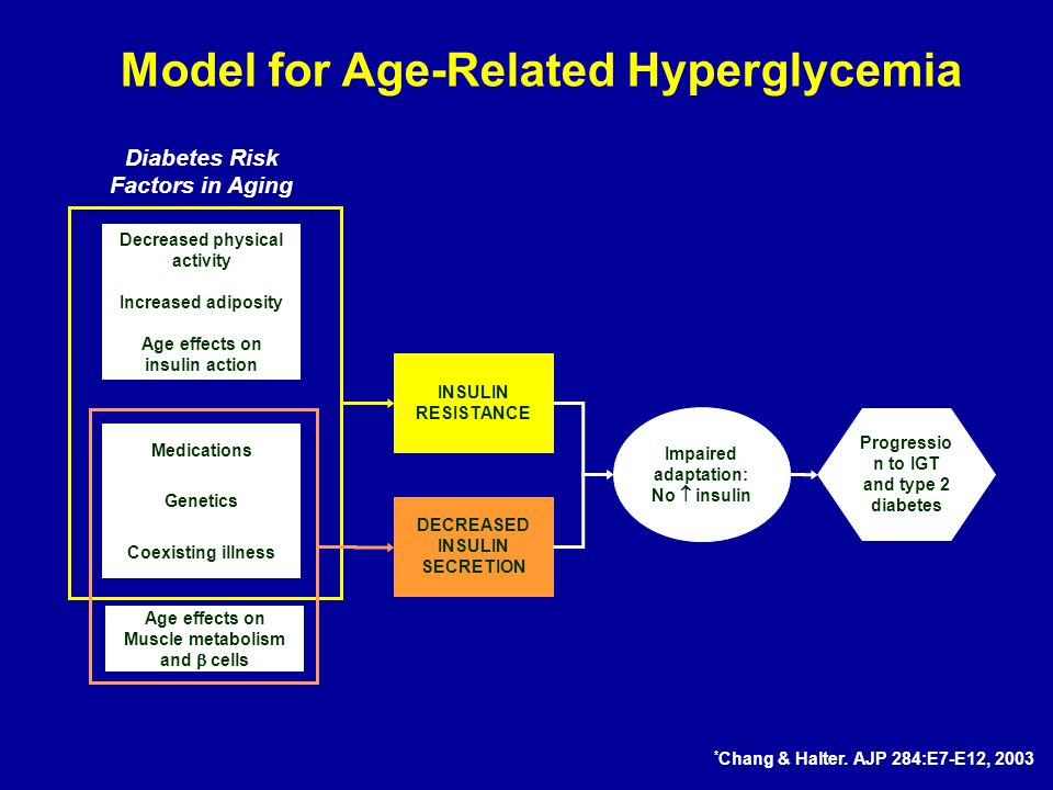 Increased adiposity Age effects on insulin action Medications Age effects on Muscle metabolism and  cells Coexisting illness Genetics INSULIN RESISTANCE Impaired adaptation: No  insulin Progressio n to IGT and type 2 diabetes DECREASED INSULIN SECRETION Diabetes Risk Factors in Aging Model for Age-Related Hyperglycemia Decreased physical activity * Chang & Halter.