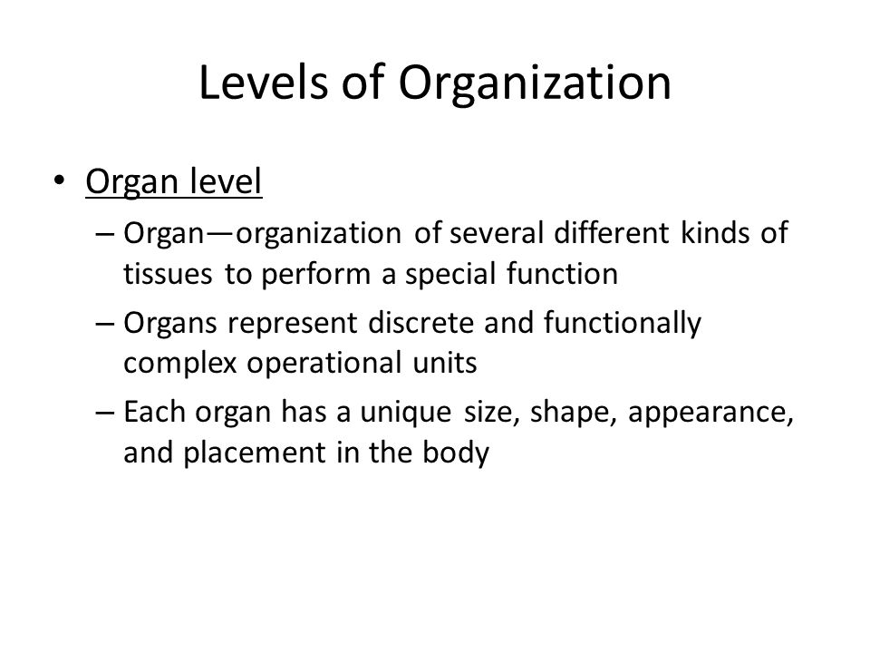 Levels of Organization Organ level – Organ—organization of several different kinds of tissues to perform a special function – Organs represent discret