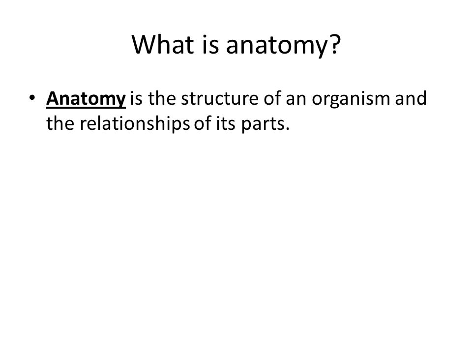 What is anatomy? Anatomy is the structure of an organism and the relationships of its parts.