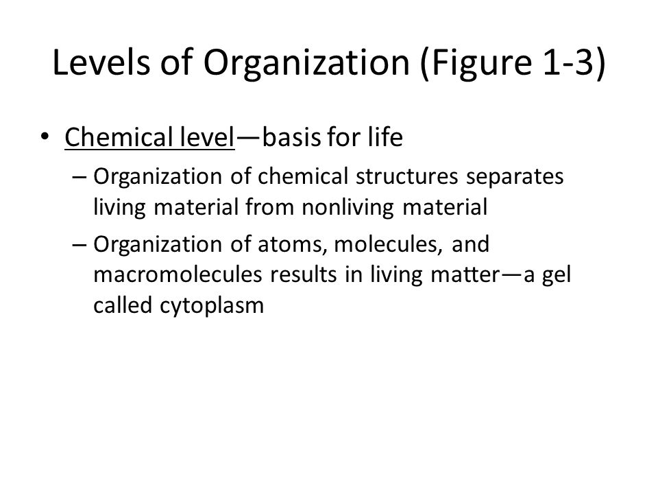Levels of Organization (Figure 1-3) Chemical level—basis for life – Organization of chemical structures separates living material from nonliving material – Organization of atoms, molecules, and macromolecules results in living matter—a gel called cytoplasm
