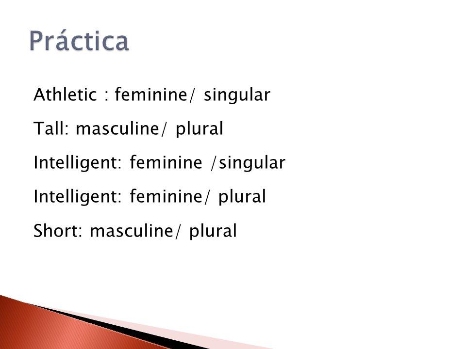 Athletic : feminine/ singular Tall: masculine/ plural Intelligent: feminine /singular Intelligent: feminine/ plural Short: masculine/ plural