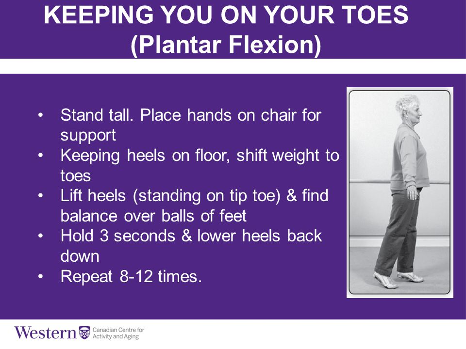 Balls, Bands & Balance KEEPING YOU ON YOUR TOES (Plantar Flexion) Stand tall. Place hands on chair for support Keeping heels on floor, shift weight to