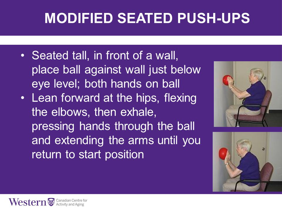 MODIFIED SEATED PUSH-UPS Seated tall, in front of a wall, place ball against wall just below eye level; both hands on ball Lean forward at the hips, f