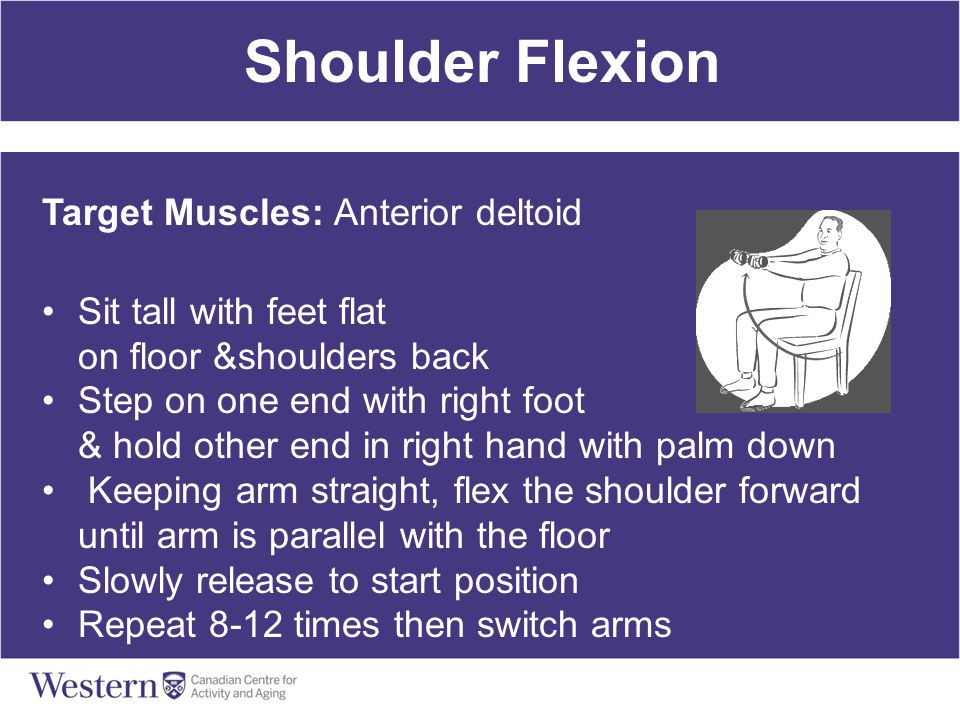 Shoulder Flexion Target Muscles: Anterior deltoid Sit tall with feet flat on floor &shoulders back Step on one end with right foot & hold other end in